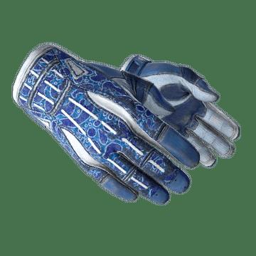 ★ Sport Gloves | Amphibious