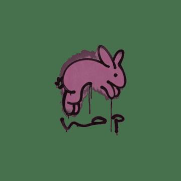 Sealed Graffiti   Hop (Princess Pink)