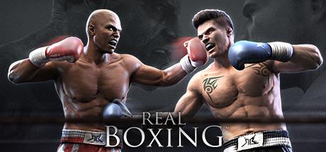 Real Boxing™ -