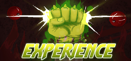 Experience -